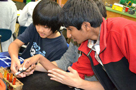 Jefferson Middle School students use laser to measure light penetration during hands-on activity.