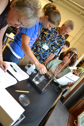 Teachers perform hands-on activity during biology session.