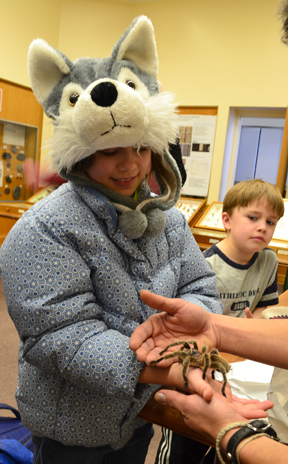 Visitor to the Expo gets a chance to hold Cecil the tarantula, while her younger brother watches.