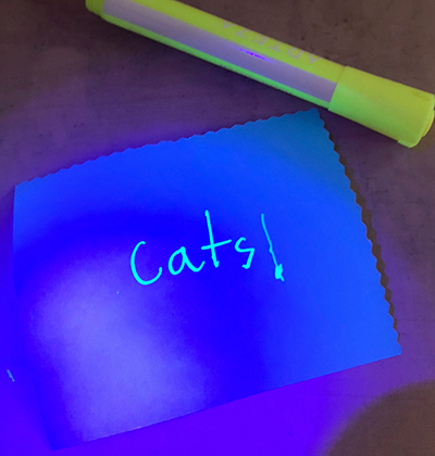 A secret message written in invisible ink, which a student revealed using UV light. (Image courtesy of Pamela Pena Martin.)
